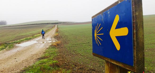 sentiero cammino sarria santiago tour spagna